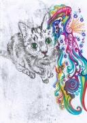 Cat by Lottie Dingle