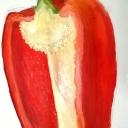 Pepper by Lottie Dingle